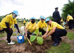 รวมใจไทยปลูกต้นไม้เพื่อแผ่นดินสืบสานสู่100ล้านต้น